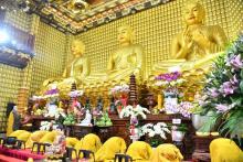 Một góc văn hóa Việt trong Lễ cầu an và hoàn Kinh Dược Sư tại chùa Giác Ngộ